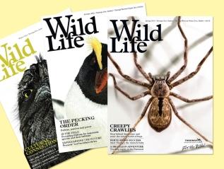Wild Life MagazineCovers