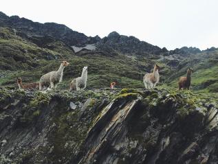 Magic in Peru