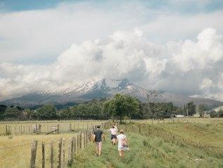 New Zealand – Wild Local FoodChallenge